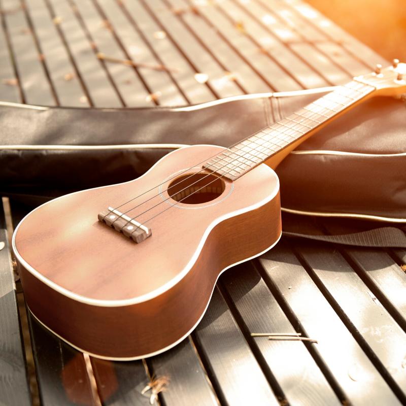 ukulele in the sun